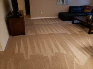Carpet Cleaning Office carpets